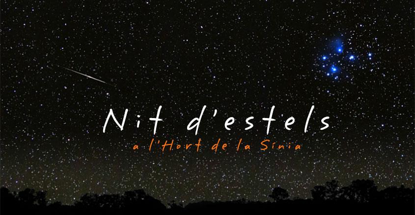 nit_destels
