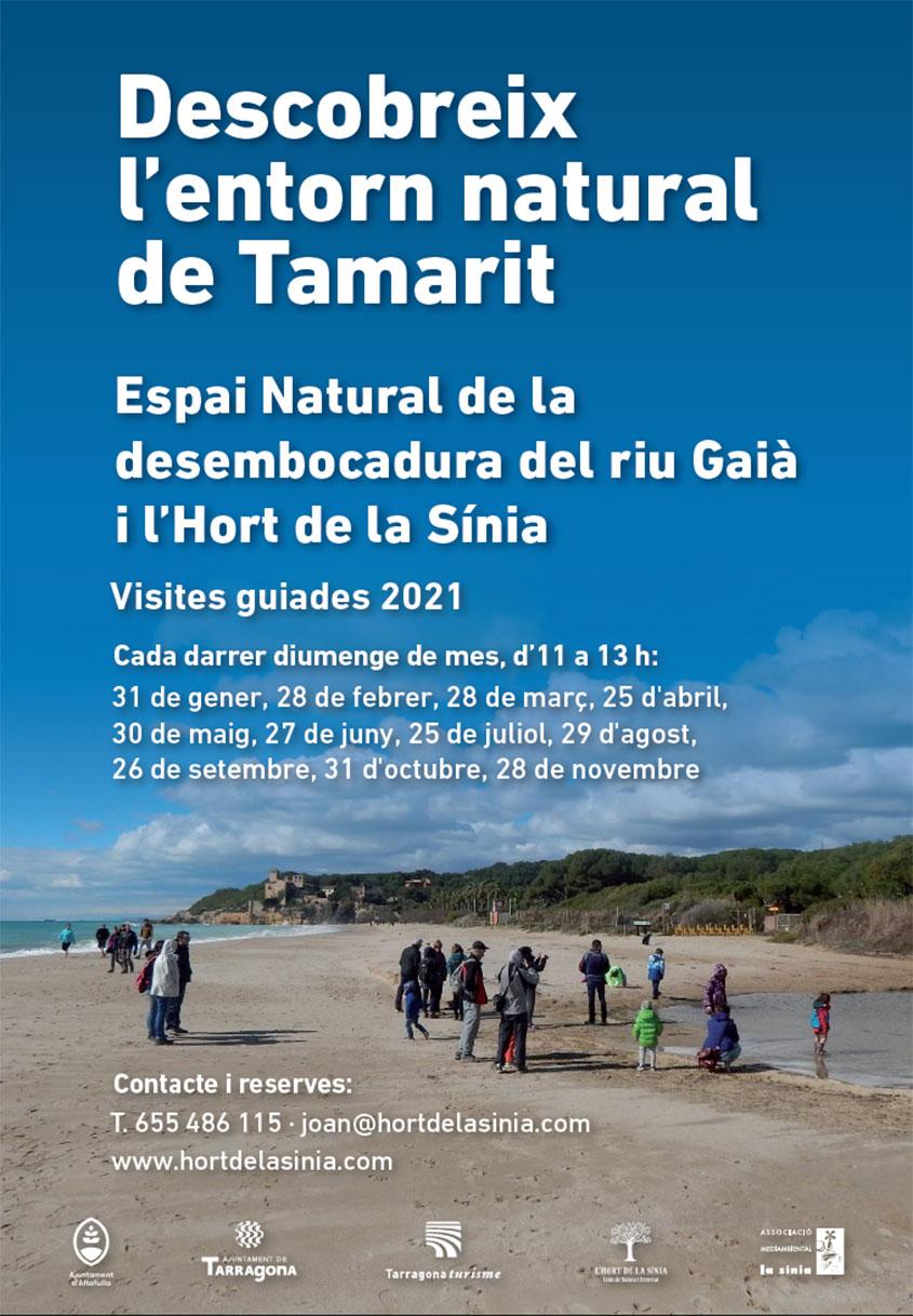 Visites a Tamarit Hort de La Sínia Imatge platja amb el castell al fons